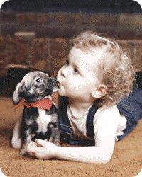 La mascotas y los niños