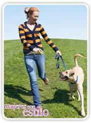 Paseo con perro