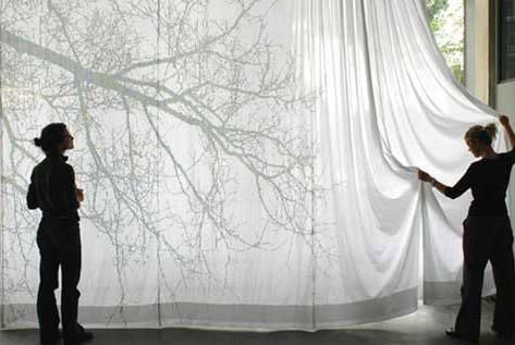 ascii-cortinas.jpg