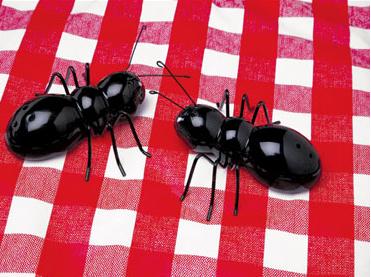 salero-pimentero-hormigas.jpg