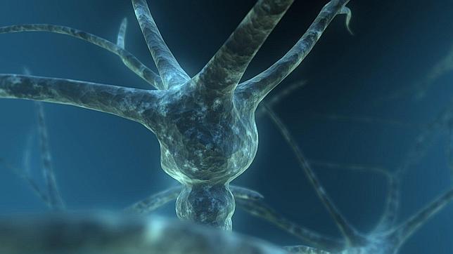 Enfermedades por proteínas mal plegadas.