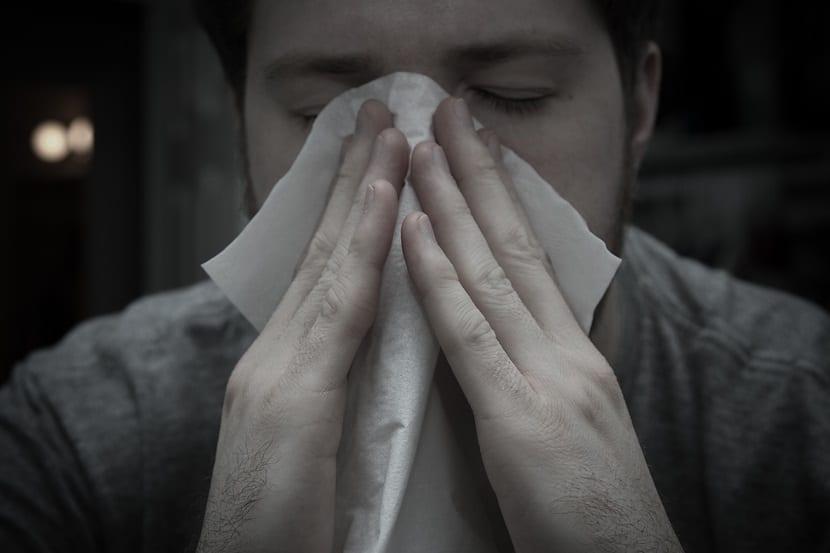alergia achus