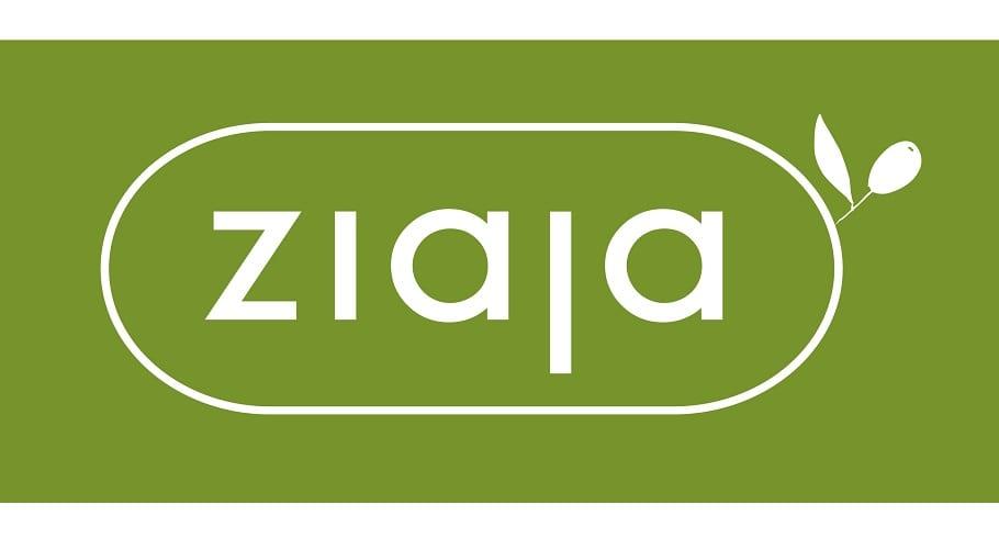 logo2010_jubileuszowe_ai7