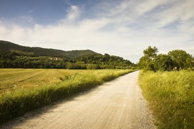 La Toscana, cuna de la belleza natural