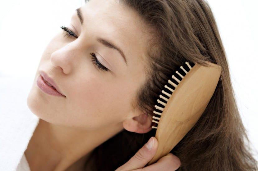 salud cabello