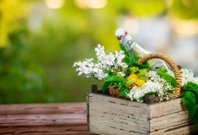 El maravilloso poder de las flores