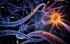 enfermedad de la neurona motora