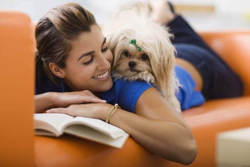 mascotas y felicidad
