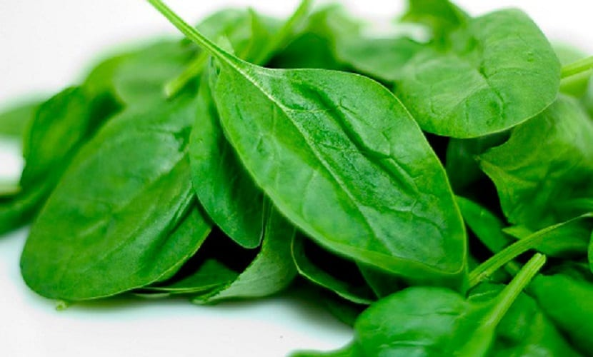 Beneficios espinacas