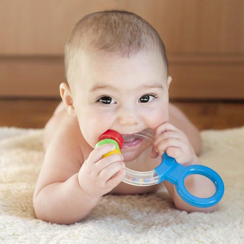 Bebés que se llevan las cosas a la boca