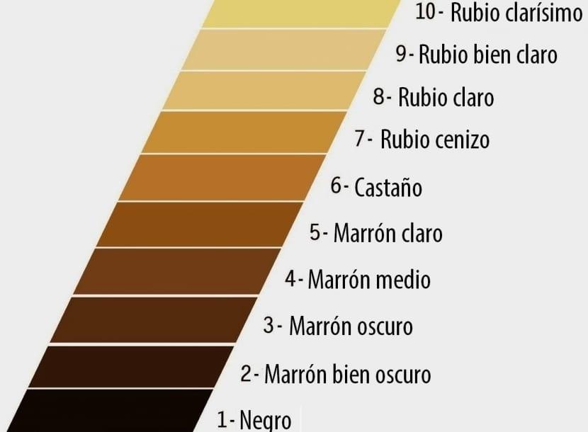 Escala de colores para tintes