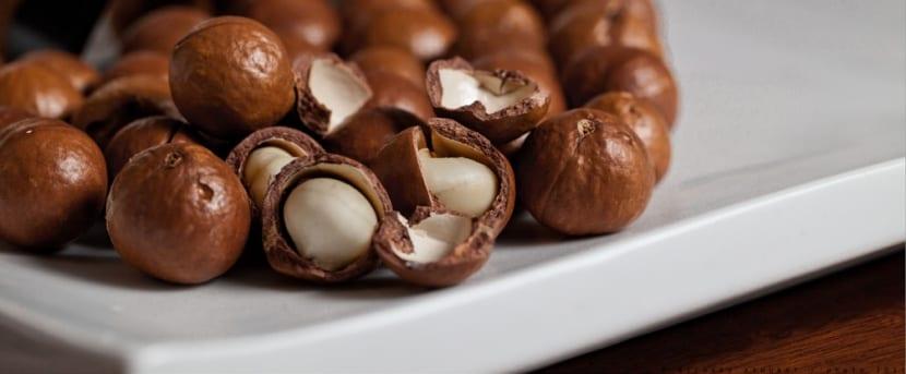 nueces-macadamia-portada