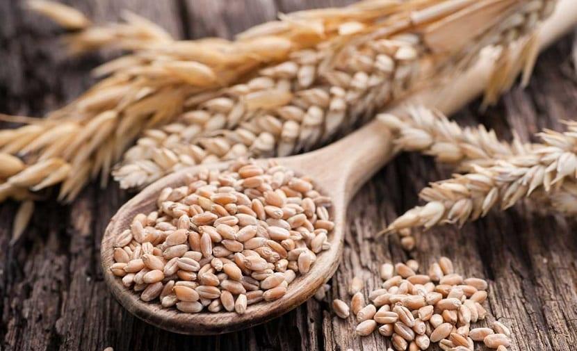 Cereales de espelta sin azucar