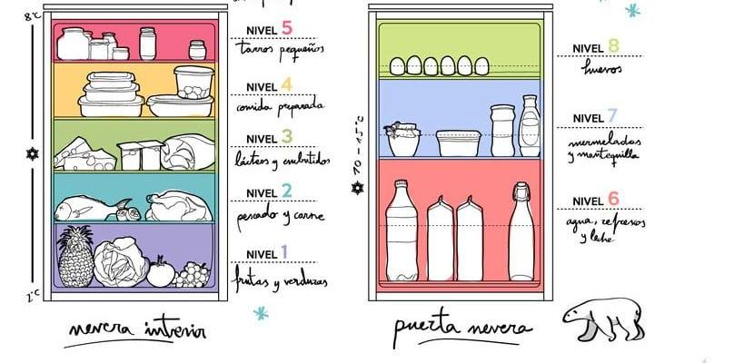 Consejos para ordenar correctamente los alimentos en la nevera for Como ordenar la nevera