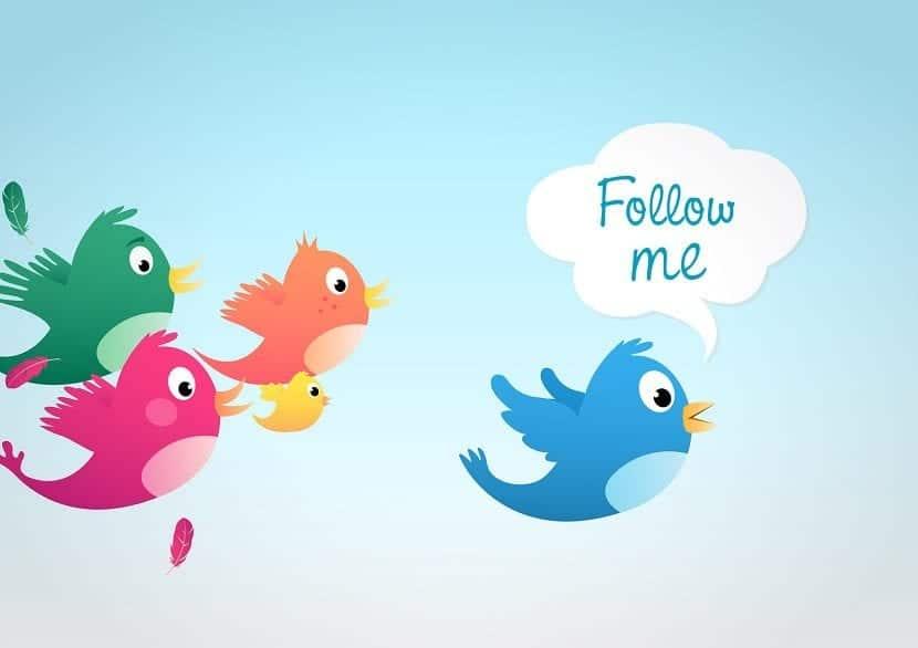 Pájaros de Twitter