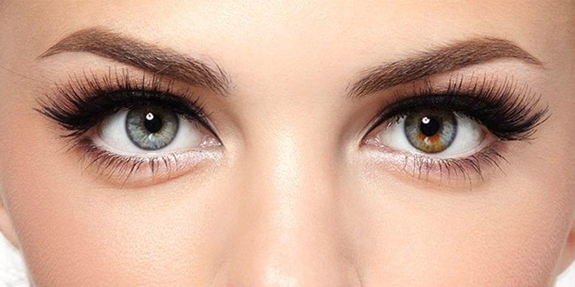 ojos grandes y luminosos