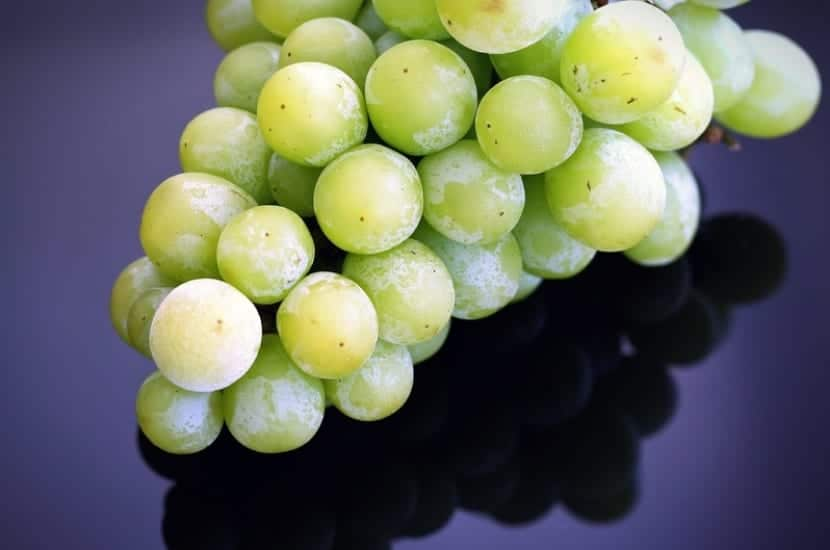 Cremas caseras con uvas
