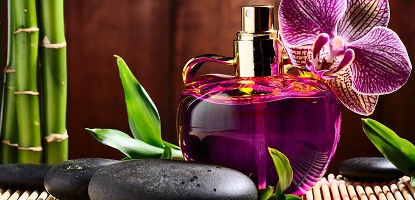 Gustos en perfume