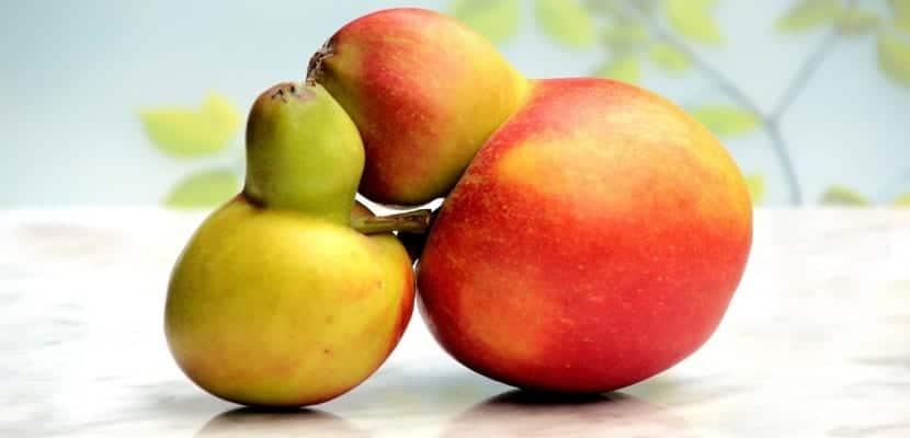 pera y manzana abrazándose