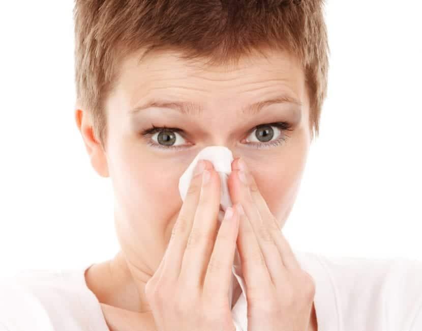 Remedios naturales para prevenir el resfriado