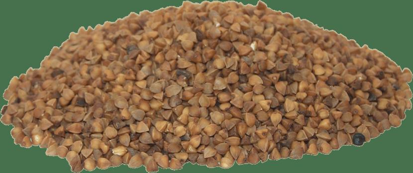 trigo sarraceno detalle