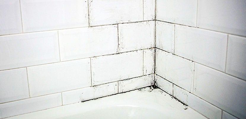 Moho en cuarto de baño