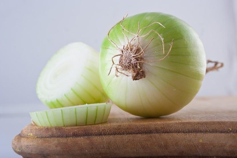 Cebolla para la fiebre