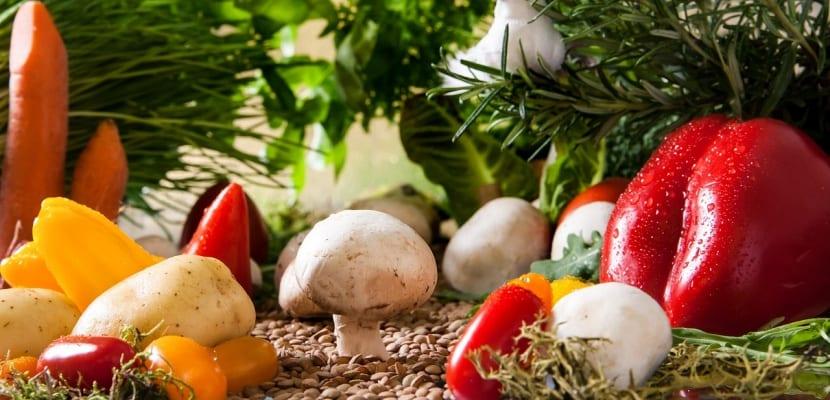 verduras y vegetales