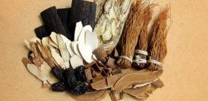 maderas y raíces