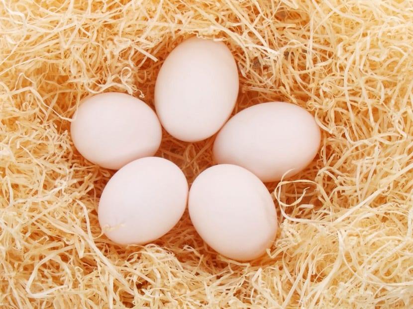 Huevos para el cabello