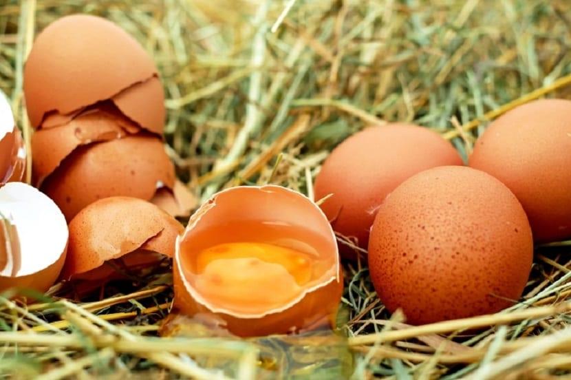 Mascarillas de huevo para el cabello