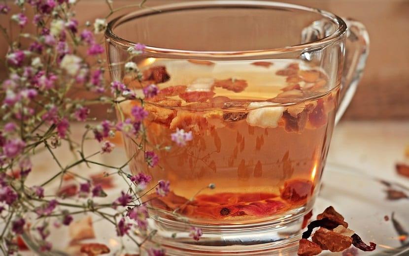 Cola de Caballo remedios caseros