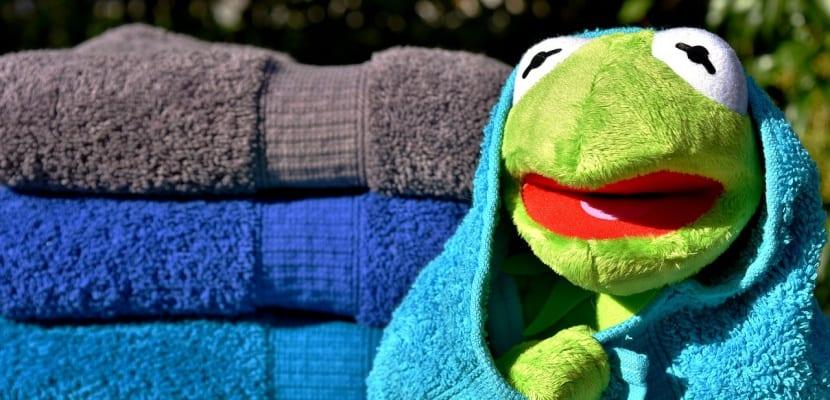 rana Gustavo con toallas