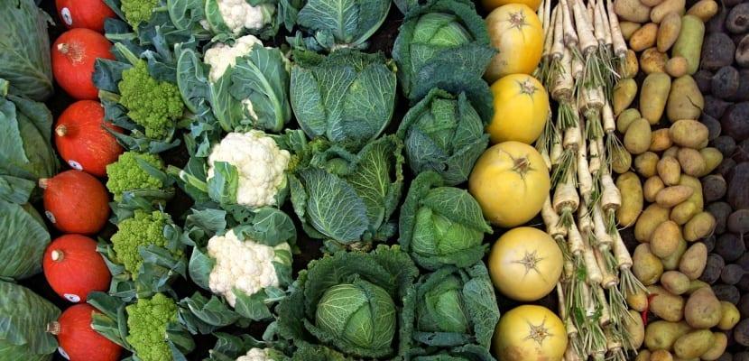 coles y verduras