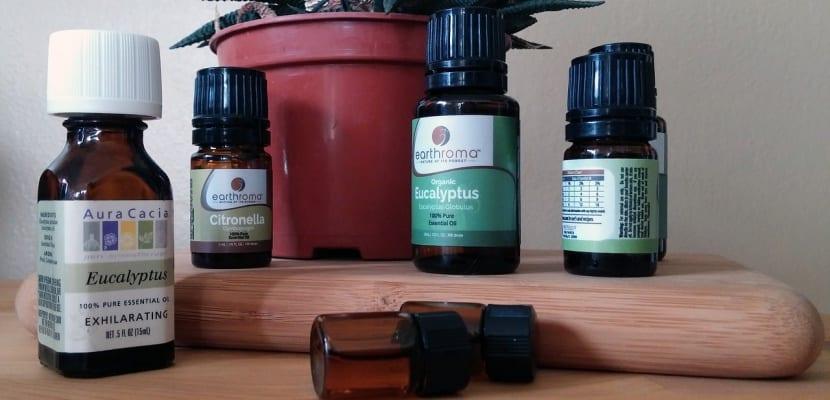 aceites esenciales de critronella y menta