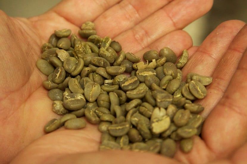 Café verde para la salud