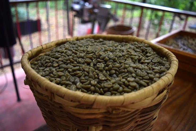 Café verde sin tostar