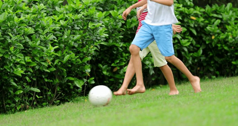 jugar a la pelota