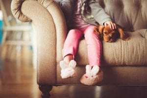 Emociones que sienten los perros