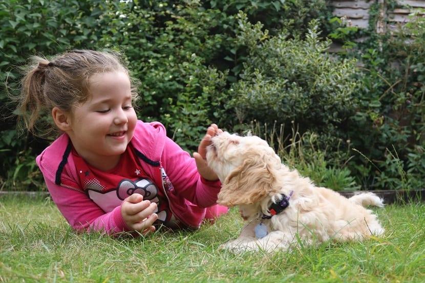 beneficios de tener un perro en niños