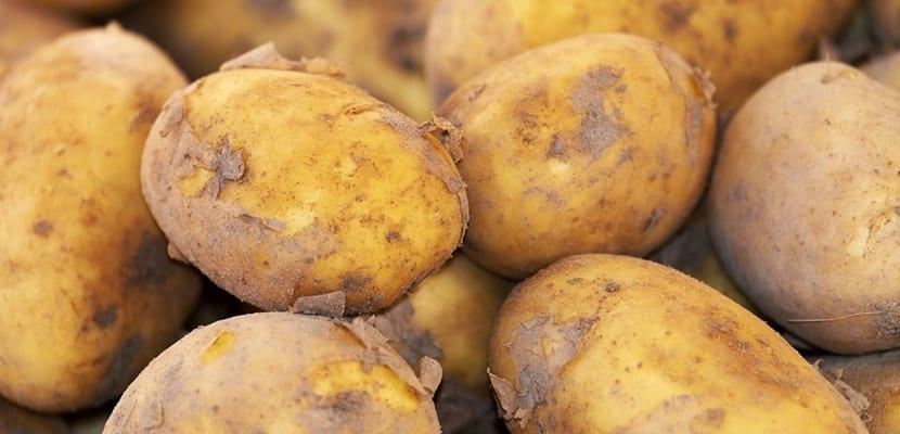 patata con tierra