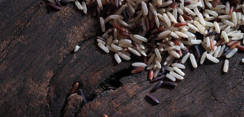 variedad de arroz