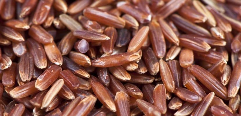 arroz rojo a granel