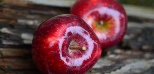 Manzanas saludables