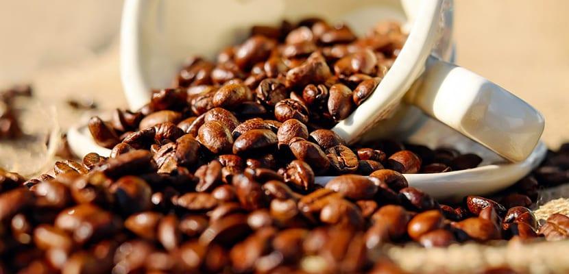 Crema reductora de café