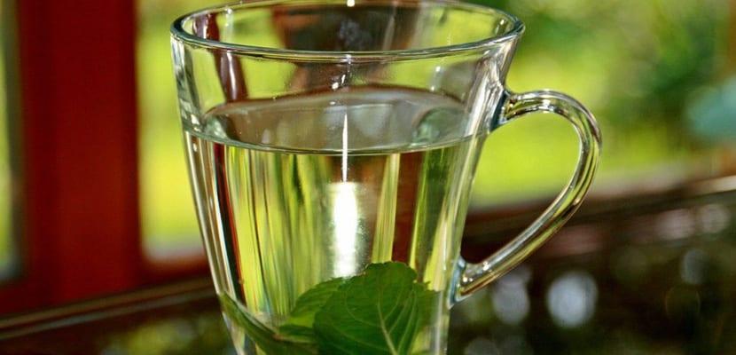 Propiedades del té de albahaca