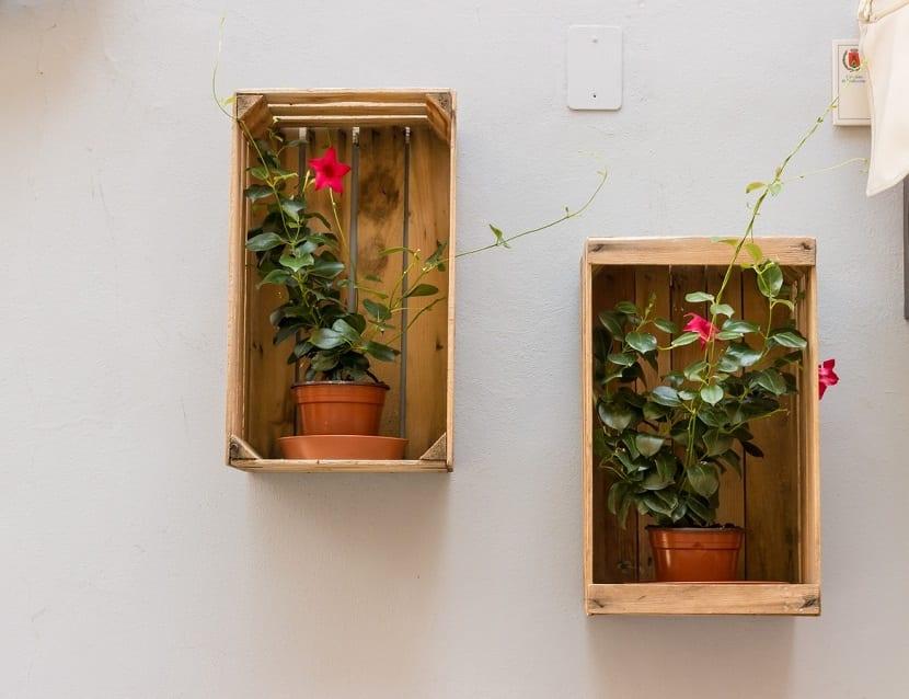 Cajas de madera como maceteros