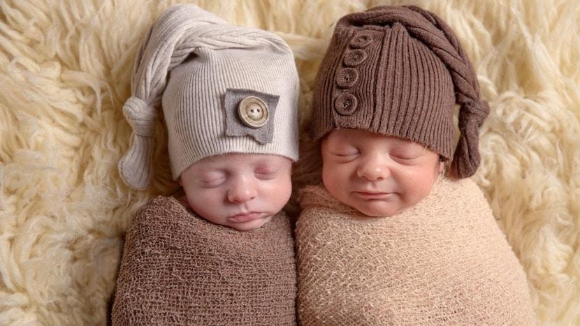 bebes gemelos