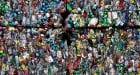 Impacto medioambiental del plástico y alternativas para reemplazarlo