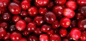 Arándanos rojos